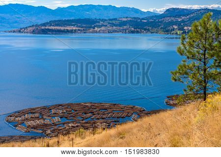Majestic mountain lake in Canada. Okanagan Lake. Kelowna. British Columbia.