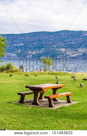 A picnic table with gorgeous view at Okanagan Lake, British Columbia, Canada.