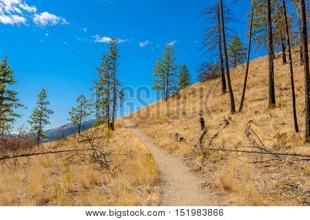 Fragment of trail at Okanagan Lake in Kelowna, Vancouver, Canada.