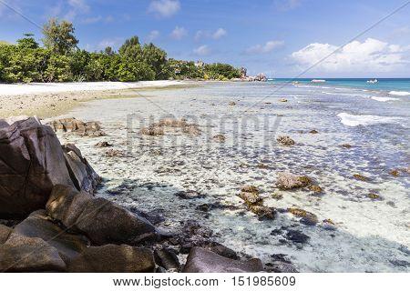 Anse Severe, La Digue, Seychelles