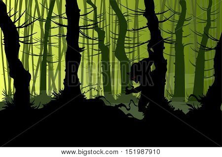Vector illustration of a warewolf lurking in a creepy night forest with mist