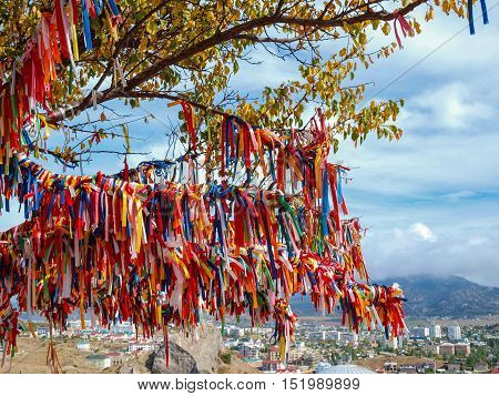 Wish Tree with bright ribbons against the walls of the ancient fortress in Sudak