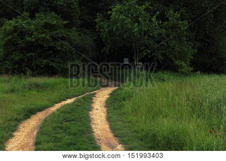 Photo of dark path to haunted forest with ruts photo manipulated for more scary feeling