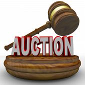 A gavel comes down on the word Auction to symbolize the final bid being called poster