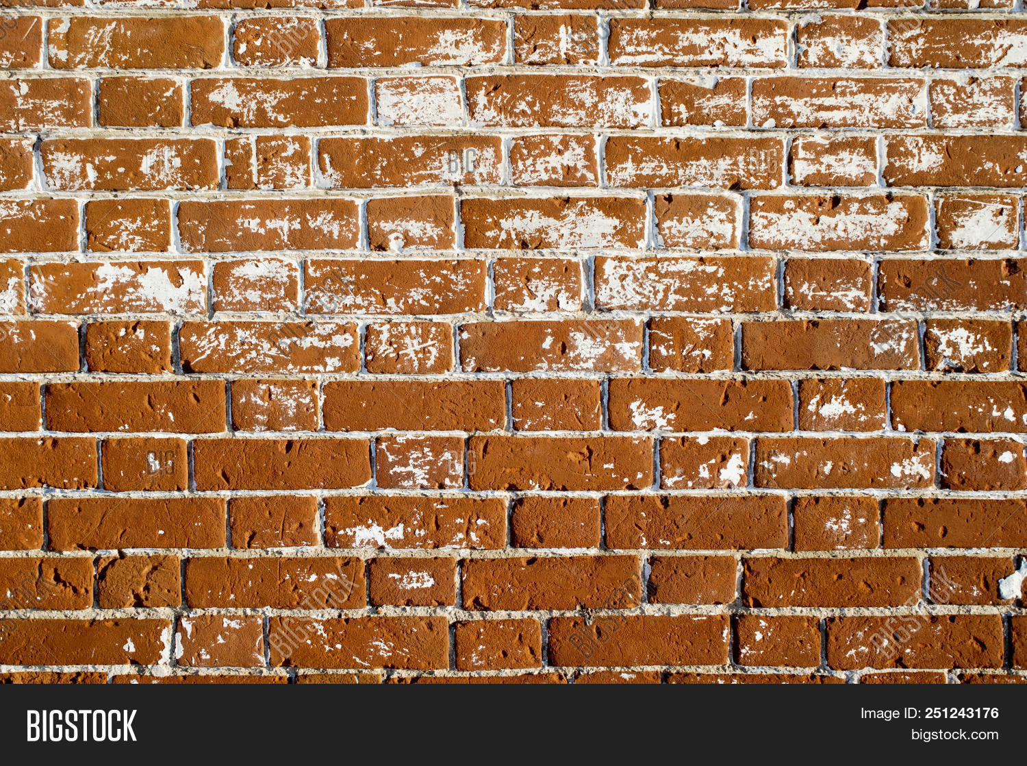 Swell Part Wall Old House Image Photo Free Trial Bigstock Download Free Architecture Designs Embacsunscenecom