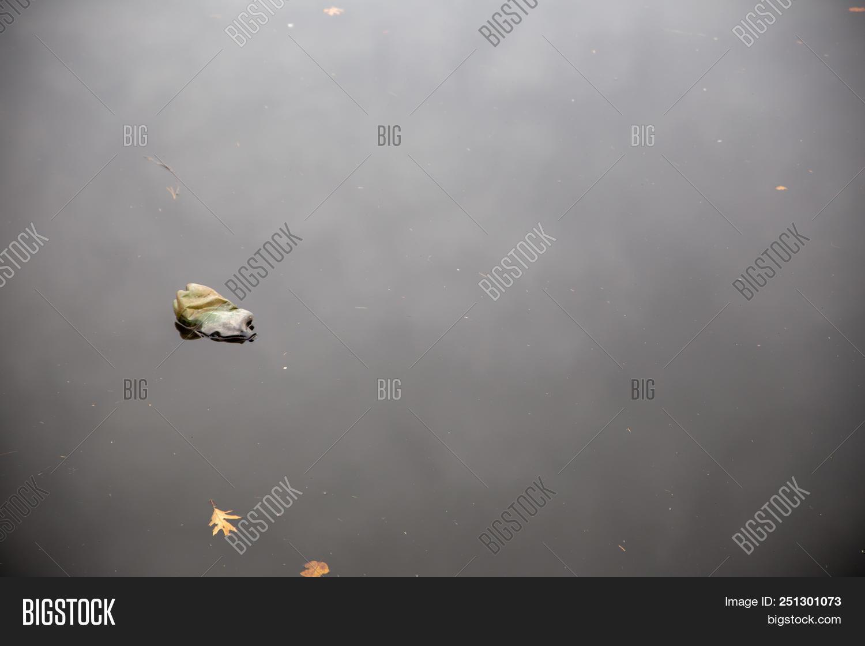 Single Bottle Floating Image & Photo (Free Trial) | Bigstock