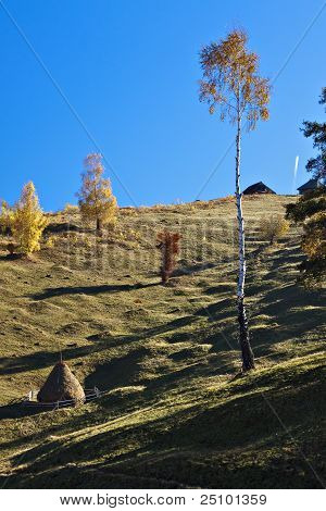 Fall on mountain
