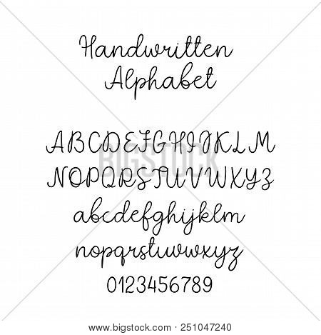 Vector Calligraphy Alphabet. Exclusive Letters. Decorative Handwritten Brush Font For: Wedding Monog