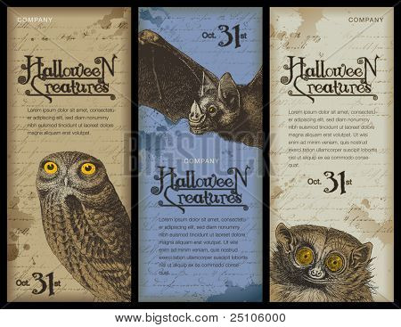 set of three halloween banners with different night animals