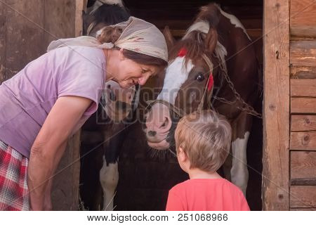 Granma Is Teaching Grandson How To Hold The Bridle Horses At The Stable Are Waiting For Oat Summer H