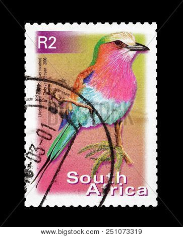 South Africa - Circa 2000 : Cancelled Postage Stamp Printed By South Africa, That Shows Lilac Breste