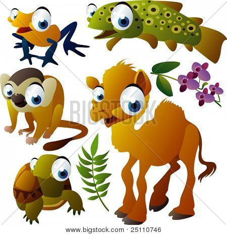 vector animals: tree frog, trout, camel, monkey, turtle