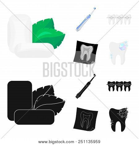 Mint Chewing Gum With Mint Leaves, Toothbrush With Bristles, Bregettes With Teeth, X-ray Of The Toot