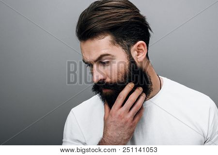 Portrait of handsome brutal masculine young bearded male looking down, touching his beard. posing on a gray studio background. Portrait of young European fashion barber with trendy beard. poster