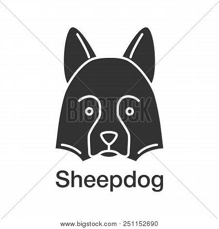 Shetland Sheepdog Glyph Icon. Herding Dog. Silhouette Symbol. Negative Space. Vector Isolated Illust