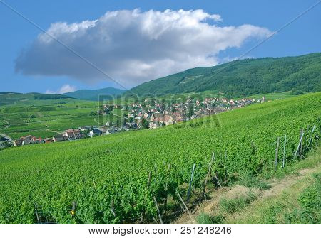 Famous Wine Village Of Riquewihr In Grand Est Region (former Alsace) ,france