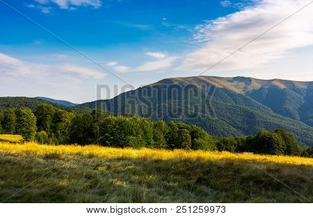 Grassy Meadow And Beech Forest On Hillside. Apetska Mountain In The Distance. Lovely Summer Afternoo