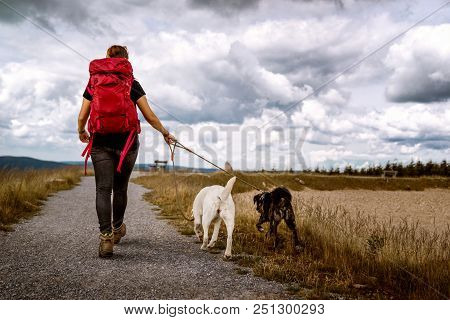 Young Woman Walks With Two Dogs On A Hiking Trail In The Mountains Hiking With A Dramatic Sky - Labr