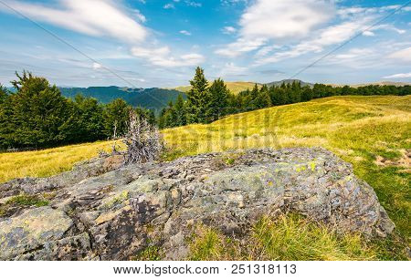 Lovely Summer Landscape Of Svydovets. Huge Boulder On A Grassy Meadow. Spruce And Beech Forest On A