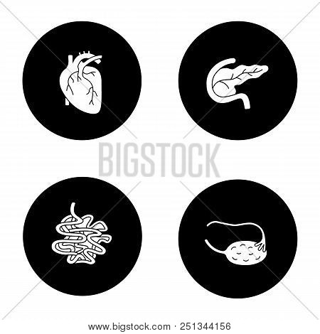 Internal Organs Glyph Icons Set. Heart, Pancreas And Duodenum, Small Intestine, Ovary And Fallopian