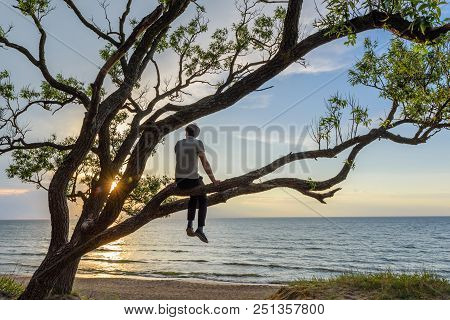 Man Sitting On The Tree Watching Sunset Over The Sea, Enjoying A Peaceful Moment. Travel Concept