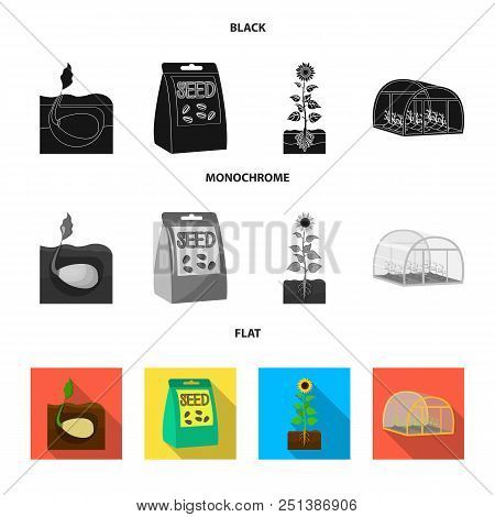 Company, Ecology, And Other  Icon In Black, Flat, Monochrome Style. Husks, Fines, Garden Icons In Se