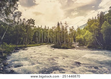 Beautiful River In Forest Nature. Peaceful Toned Nature Background. Fast Water Stream In Mountain Ri