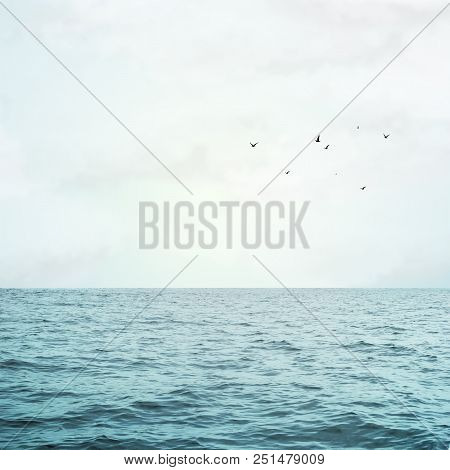 Sea Waves And Beauty Sky With Flying Birds