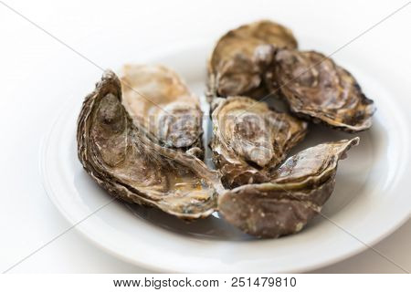 Fresh oysters. Raw fresh oysters on white round plate, image isolated, with soft focus. Restaurant delicacy. Saltwater oysters. poster