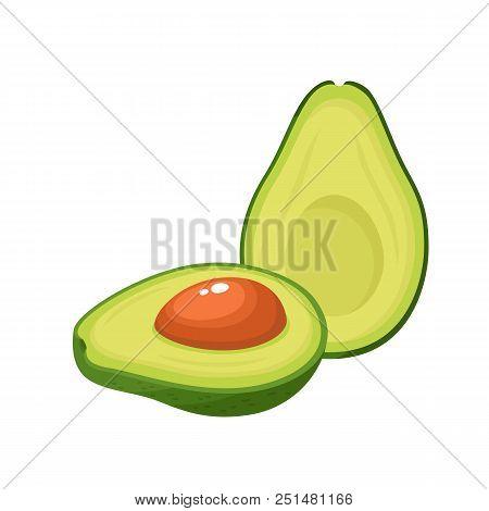 Bright Vector Illustration Of Colorful Half And Whole Of Fresh Avocado. Fresh Cartoon Avocados Isola
