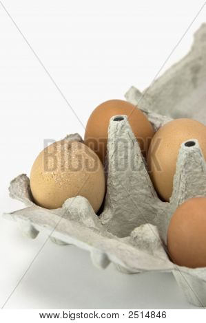 Eggbox With Four Eggs