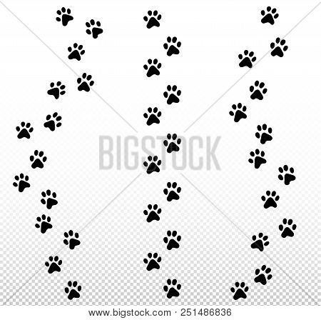 Paw Dog, Puppy, Cat Vector Print, Animal Trail Icon Set On Transparent Background.