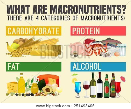 Main Food Groups - Macronutrients. Carbohydrates, Fats, Proteins  And Alcohol. Dieting, Healthcare A