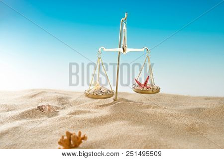Scales of Justice with Sand and Sea Shells