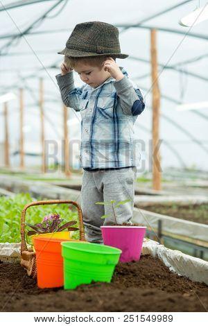 Small Farmer Boy. Small Farmer Boy Working In Greenhouse. Small Farmer Boy In Fashion Hat. Garden Wo