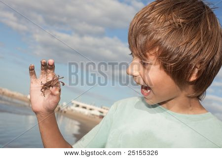 child holding a little crab