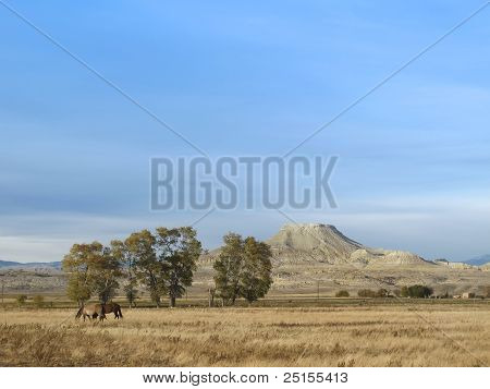 Crowheart Butte In Wyoming