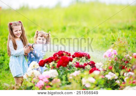 Two Adorable Little Sisters Having Fun Watering Roses Together. Rosarium.