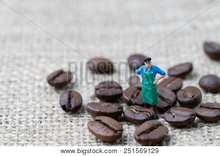 Coffee Professional Or Expertise Concept, Miniature People Figurine Worker Standing With Roasted Cof