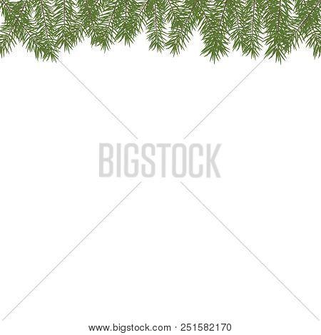 Horizontal Christmas Tree Border. Vector Christmas Tree Branches. Realistic Fir-tree Border. Vector