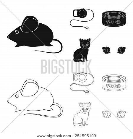 Mouse, Pet Leash, Pet Food, Kitten. Cat Set Collection Icons In Black, Outline Style Vector Symbol S