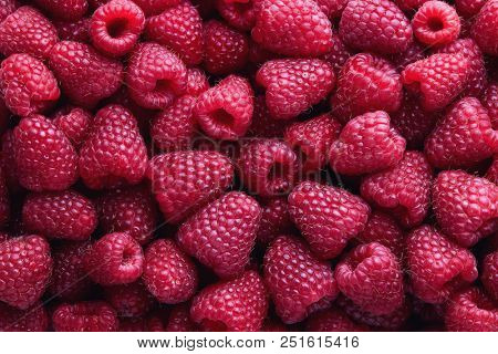 Full Frame Shot Of Raspberries. Fresh Organic Raspberry.