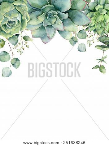 Watercolor Card With Succulents And Eucalyptus Leaves. Hand Painted Eucalyptus Branch, Green Succule
