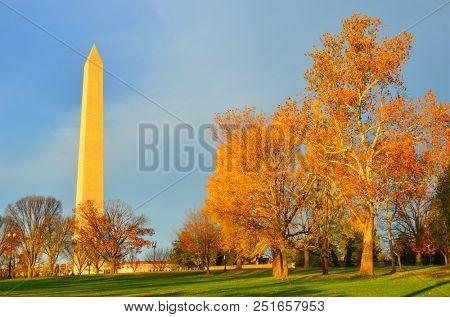 Washington DC in Autumn season - Washington Monument and trees