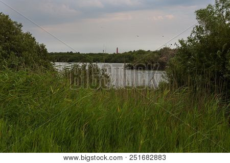 The North Tower Lighthouse Seen Behind A Small Lake (westerplas) In A Nature Reserve On The Dutch Is