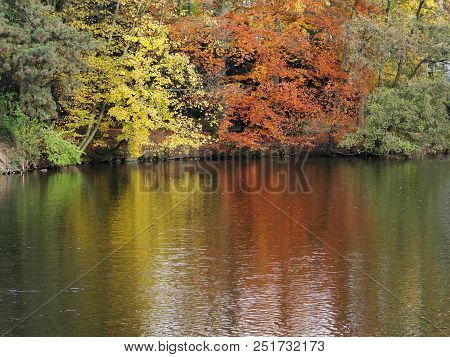 autumnal trees are reflected in the water