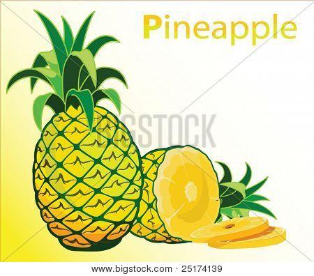 Illustration of fresh pineapple