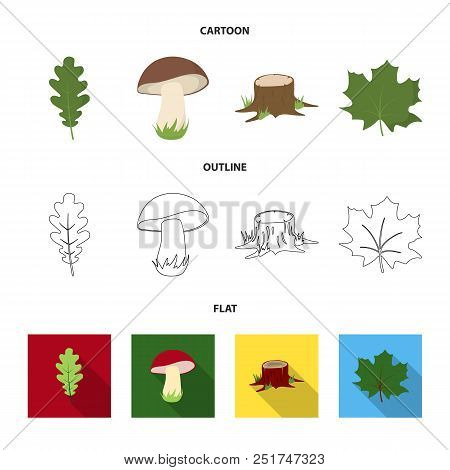 Oak Leaf, Mushroom, Stump, Maple Leaf.forest Set Collection Icons In Cartoon, Outline, Flat Style Ve