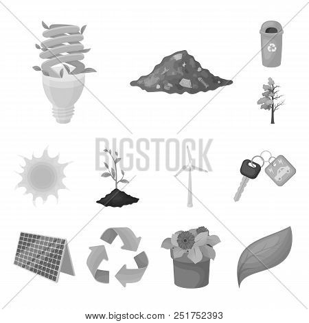 Bio And Ecology Monochrome Icons In Set Collection For Design. An Ecologically Pure Product Vector S