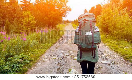 Atmospheric Moment In Mountains. Hiking Woman With Backpack Traveler On Forest.  Stylish Woman Hikin